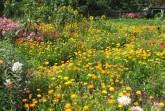 Garten in Alverdissen