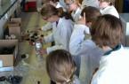 Workshop-zur-Lackchemie