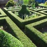 1. Mai – Offene Gärten in Lippe