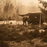 Steinzeitforschungen in Oerlinghausen