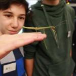 Jugendliche Forscher zeigen ihre Arbeit