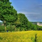 Wanderung auf Wewelsburger Hochfläche