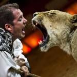Circus Krone zeigt in Gütersloh sein Weltklasse-Programm