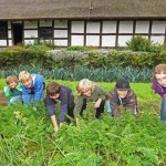 Ran ans Gemüse – Erntetag für Kinder im LWL-Freilichtmuseum Detmold