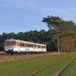 Die historischen Schienenbusse unterwegs auf der TWE-Strecke, hier zwischen Harsewinkel und Versmold, Foto Josef Högemann (2)