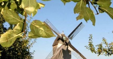 Naturbegegnungen-September-