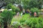 _Offene-Gärten