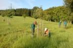Freiwilliges Ökologisches Jahr beim Kreis Lippe klein