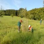 Freiwilliges Ökologisches Jahr beim Kreis Lippe möglich