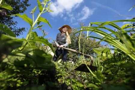 Bild des Monats Juni Zecken-Gefahr im Garten