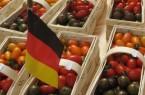 Tomatenfest Deutschlandkorb