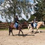 Erholung auf dem Pferd – Reitstall Tiffe