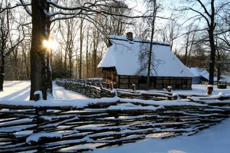 0901-Freimus+Schnee36