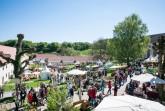 Gartenfest-Dalheim2