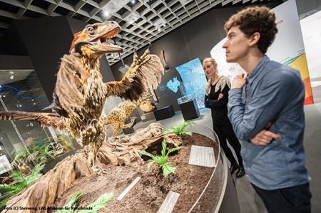 Geheimnisse der Dinosaurierfossilien