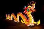 Chinesische Lichter im Allwetterzoo Münster_Drache (1)