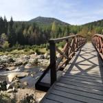 Tschechien zieht mehr Touristen an
