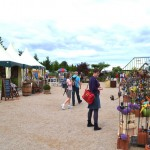 Bunter Gärtnermarkt auf der Gartenschau