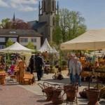 Profis geben Tipps für Garten und Wohnung