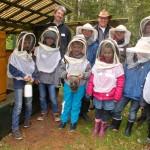 Wie der Honig ins Glas kommt
