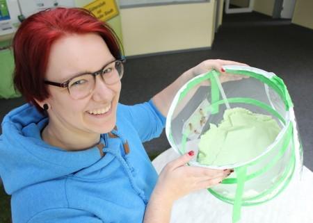 Frauke Hille begleitet im Fachbereich Umweltschutz die Schmetterlingszucht: Die Puppen hängen am Netz und brauchen eine bis mehrere Wochen, bis die Hülle gesprengt wird und der Distelfalter in sein kurzes Leben fliegt