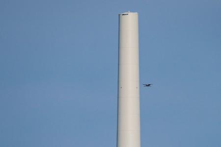 Bereits wie im letzten Jahr fliegen die Schwarzstörche durch Teile des Windparks Hassel, um Nahrung für ihren Nachwuchs heranzuschaffen.
