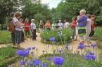 Während eines Spaziergangs durch die ländlichen Gärten im LWL-Freilichtmuseum Detmold werden die Unterschiede in den Gärten anschaulich erklärt. Foto: LWL/Jähne