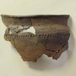 LWL-Archäologen graben in Delbrück-Bentfeld Funde aus der Römerzeit aus