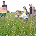 Einfach wachsen lassen – Kreis fördert die Biodiversität in Lippe