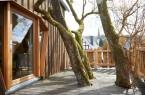 Das Baumhaus ist in eine Baumkrone gebaut wordenCopyright: © imago /Gabi Sonnenschein
