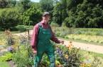 Kunstwerk aus Blüten, Blättern und Farben: Detlev Meier freut sich über die gelungene Sommerbepflanzung im Botanischen Garten.