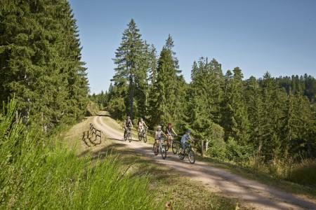 Familienradtour Bähnle-Radweg im Hochschwarzwald nah © TMBW_Duepper