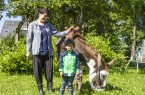"""Die Esel tragen den Picknickkorb, freuen sich über Streicheleinheiten und erobern sich im Nu einen festen Platz im Herzen der Kids.Foto: """"Ferienwelt Winterberg"""""""