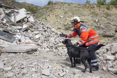 """""""Trümmer schicken"""": Jutta Sprenger gibt ihrem Hund Bandit das Suchsignal © A.Jaeckle"""