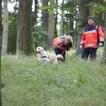 Erster Workshop für Johanniter-Rettungshunde erfolgreich durchgeführt