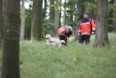 Daniela Bahn aus Paderborn schickt ihren Hund Baker auf die Suche nach Vermissten im Wald, ein weiterer Johanniter-Helfer steht mit einem Sanitätsrucksack zur ersten Hilfe bereit.