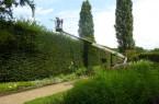 Trotz aller Technik ist für den Schnitt des Gartendenkmals Fingespitzengefühl unbedingt erforderlich.