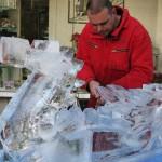 Spannender Kettensägen-Wettbewerb bei den 10. Nieheimer Holztagen