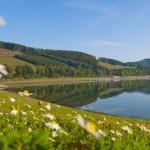 Reiseland NRW beliebt im Ausland