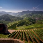 Durbach – das goldene Weindorf im Schwarzwald