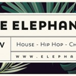 Neue Betreiber im Elephant Club.