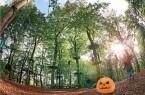Halloween_im_Kletterpark