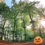 Halloween im Kletterpark – Wenn Hexen, Zauberer und Fledermäuse klettern