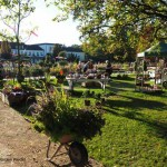 Eröffnung der Gartenschau Bad Lippspringe