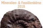 Fossilienbörse1