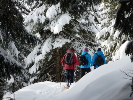 Schneeschuhwandern 2018