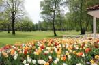 ©Graeflicher-Park-(2)