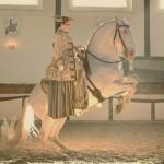 Im neuen Glanz: Saisonstart an der Fürstlichen Hofreitschule Bückeburg