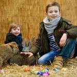 Ostern sind die Hasen los