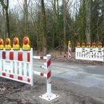 Straßensperrungen für Krötenwanderung